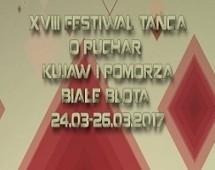 festiwal_puchar_2017-750x278